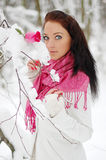 Beautiful girl smiling. Frost, winter. Royalty Free Stock Photo