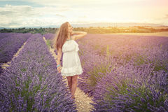 Beautiful girl smiling sunlight in lavender field Stock Photography
