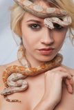 Beautiful girl and the snake Boa constrictors Stock Images
