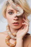 Beautiful girl and the snake Boa constrictors Stock Image