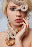 Beautiful girl and the snake Boa constrictors Royalty Free Stock Photography