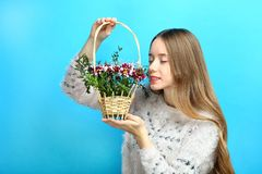 Girl sniffs flowers in a basket. A beautiful girl sniffs flowers in a basket on a blue background Royalty Free Stock Photos