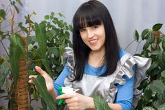 Beautiful girl sprays water green plants Royalty Free Stock Images