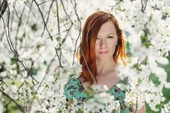 Beautiful girl in spring blossom Stock Images