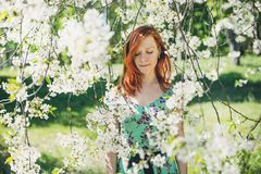 Beautiful girl in spring blossom Stock Photos