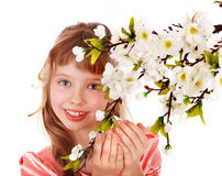 Beautiful girl with spring flower. Isolated Stock Image