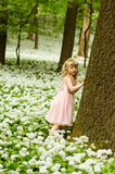 Beautiful girl in spring forrest Stock Photo