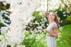 Beautiful girl in spring garden.  Stock Photography