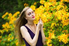 Beautiful girl in a spring garden yellow flowers royalty free stock photo