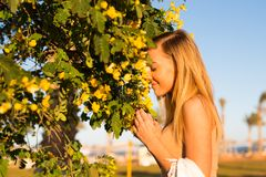 A beautiful girl ,standing near tree smelling yellow flowers  with closed eyes enjoying ,relaxing on holiday in hotel in summer. A beautiful girl ,standing near Stock Images