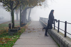 Beautiful girl standing on pedestrian walkway watching autumn mist stock photos