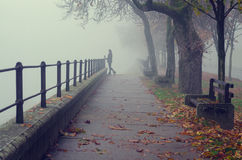 Beautiful girl standing beside walkway railing on misty autumn day Royalty Free Stock Photos
