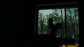 A beautiful girl stands in a spacious room against a large light window. See of his silhouette. Very beautiful and stylish frame. stock footage