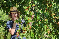 Beautiful girl in a straw hat tries cherries Royalty Free Stock Photo