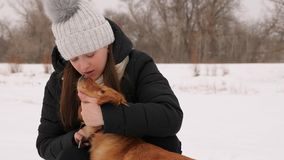 Beautiful girl strokes and feels sorry for her dog winter park. Woman kissing dog hugging Stock Photography
