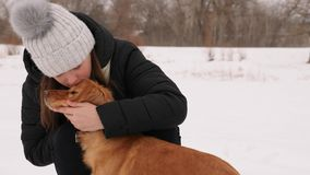 Beautiful girl strokes and feels sorry for her dog winter park. Woman kissing dog hugging Royalty Free Stock Images