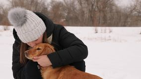 Beautiful girl strokes and feels sorry for her dog winter park. Woman kissing dog hugging Stock Images