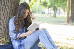 Beautiful girl, a student, reads a book while sitting in the gra Stock Image