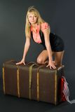 Beautiful girl with suitcase Royalty Free Stock Image
