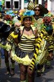 Beautiful girl summer carnaval. Beautiful girl in a summer carnaval street parade (Rotterdam, Netherlands, 2008 stock photos