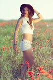 Beautiful girl in a summer field Royalty Free Stock Images