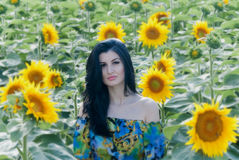 Beautiful girl in sunflower patch. The model name is Andreea Anghel - Photo taken in Braila - Romania.  Soft focus Royalty Free Stock Photography