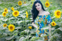 Beautiful girl in sunflower patch. The model name is Andreea Anghel - Photo taken in Braila - Romania. Soft focus Stock Image