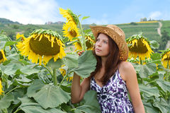 Beautiful girl with sunflowers Stock Photos