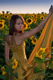 Beautiful Girl in sunflowers Stock Images