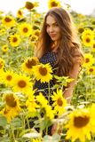 Beautiful girl with sunflowers Stock Images