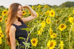 Beautiful girl with sunflowers Stock Photography