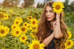 Beautiful girl with sunflowers Royalty Free Stock Photography
