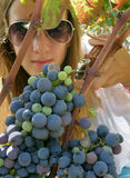 Beautiful girl with sunglasses picked grapes Stock Photos