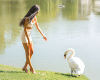 Beautiful girl with a swan on a lake Royalty Free Stock Photography