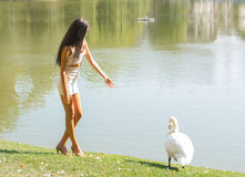 Beautiful girl with a swan on a lake Royalty Free Stock Images