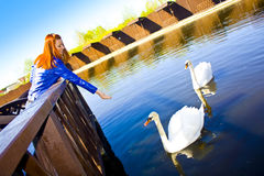 Beautiful girl with swans Royalty Free Stock Photography