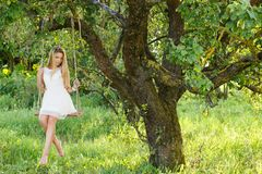 Beautiful girl on a swing Royalty Free Stock Images