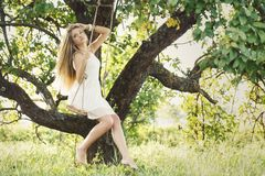 Beautiful girl on a swing Royalty Free Stock Photography