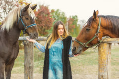 Beautiful girl taking care of her horses. Focus on girl. Warm image tone. Soft focus Stock Images