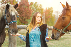 Beautiful girl taking care of her horses. Focus on girl. Warm image tone. Soft focus Stock Photography