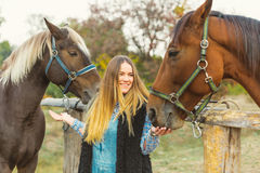 Beautiful girl taking care of her horses. Focus on girl. Warm image tone. Soft focus Stock Photo