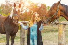 Beautiful girl taking care of her horses. Focus on girl. Warm image tone. Soft focus Royalty Free Stock Photos