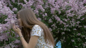 A beautiful girl is taking pictures of a lilac bush. Enjoys beautiful flowers. Breathes a beautiful fragrance stock video footage