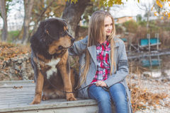 Beautiful girl with tibetan mastiff on the nature Stock Photography
