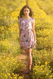 Beautiful girl in a trail among daisie Royalty Free Stock Photos