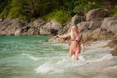Beautiful girl on a tropical beach stock images