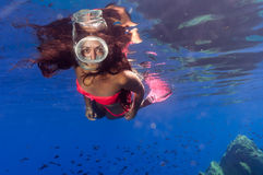 A beautiful girl underwater Royalty Free Stock Photo