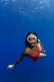 A beautiful girl underwater Stock Image