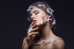 Beautiful girl in veil with feathers Stock Photography