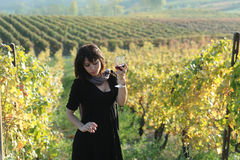 The beautiful girl in the vineyard Stock Photography